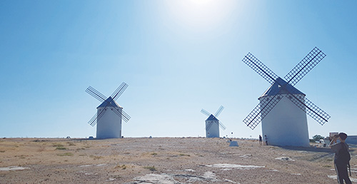 What Is the Secret to the Popularity of Don Quixote?