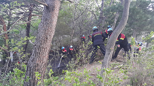How the Forest Fire in Gangwon-do Had Become A Turning Point for Firefighters